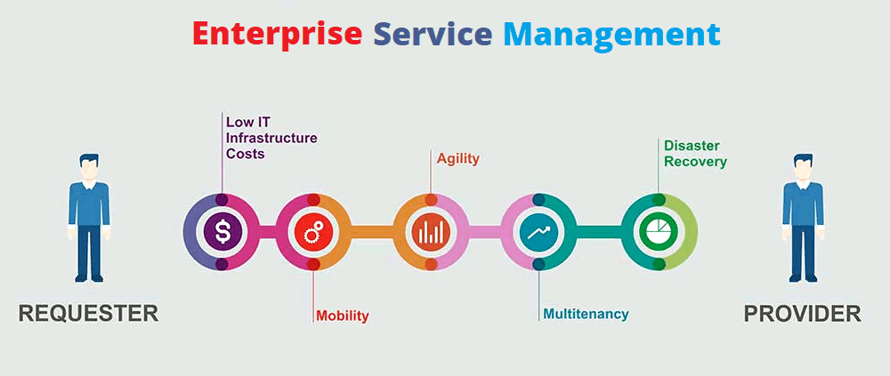 the essence of enterprise service management  a snippet